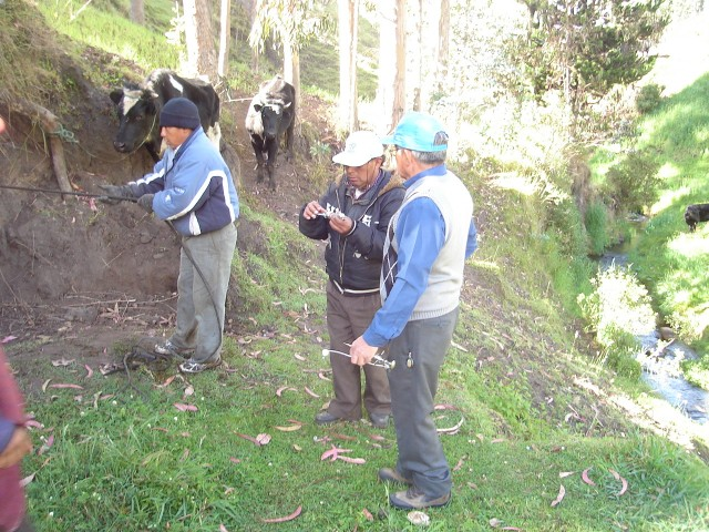 Anti-Parasites for the cows of Cagrín's community